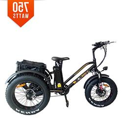 Bpmimports BPM 950A 20' 3 Wheel Electric Trike Tricycle 48