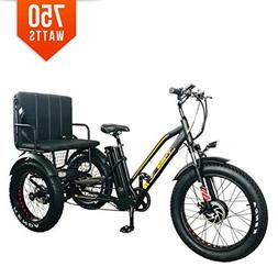 Bpmimports BPM R-750W 48V 17AH Black Rickshaw Fat TIRE Elect
