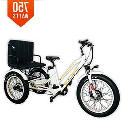 Bpmimports BPM R-750W 48V 17AH White Rickshaw Fat TIRE Elect