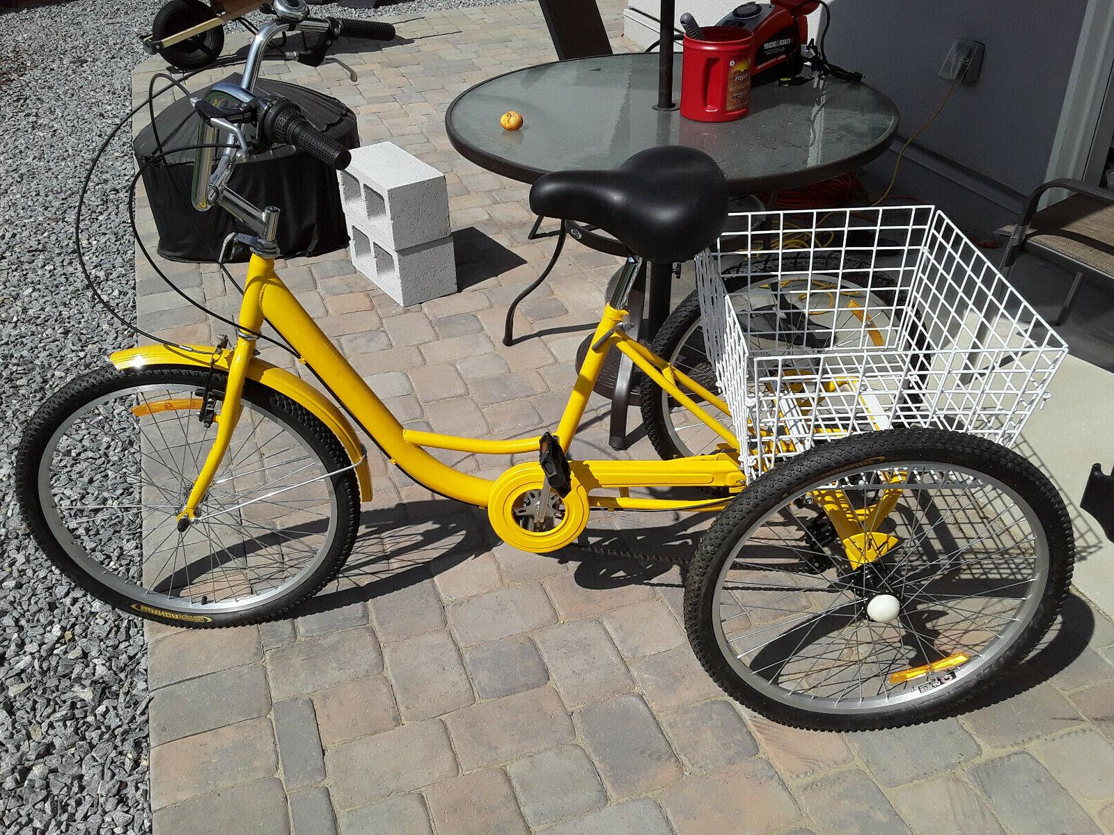 24 tricycle bicycle mint