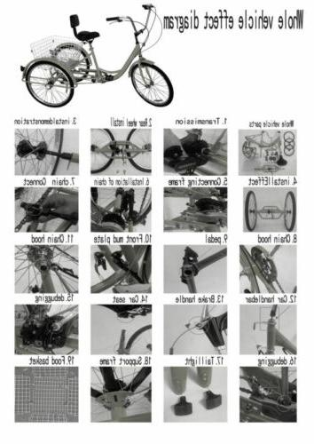 Unisex 7-Speed Tricycle Cruise Basket NEW USA