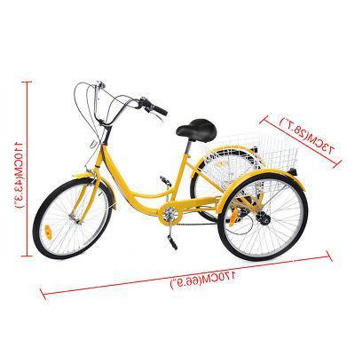 Tricycle Bike W/