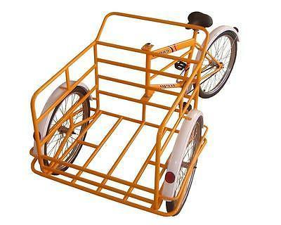 Cargo Tricycle / / Trike Bike Adult Trike Triciclo Trejo READ