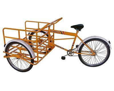 Cargo / Adult / Triciclo Trejo READ