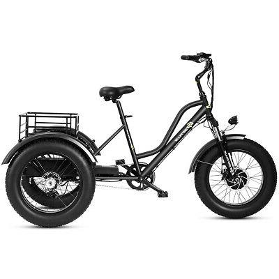 Electric Fat Tire LCD 500W