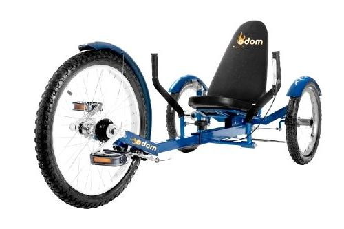 Mobo Recumbent Trike. Pedal Bicycle. Adaptive Tricycle Teens Seniors