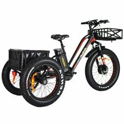 "Addmotor MOTAN Electric Trike Tricycle 750W  24""Fat Tire 3 W"