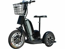 Personal Transporter Scooter Electric Trike 48v 800w, speeds